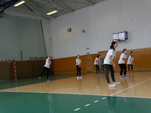 zawody-siatkowka-14