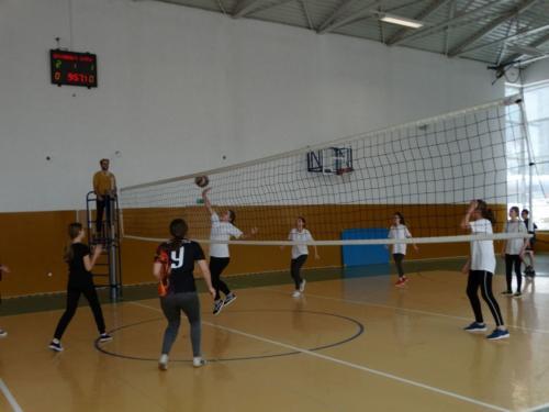 zawody-siatkowka-6